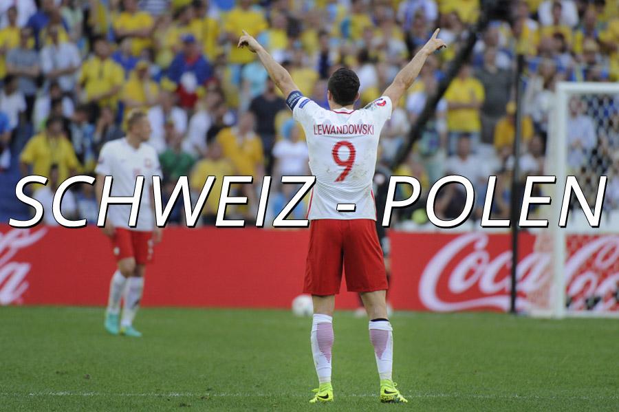 Plasil fick tjeckisk em biljett
